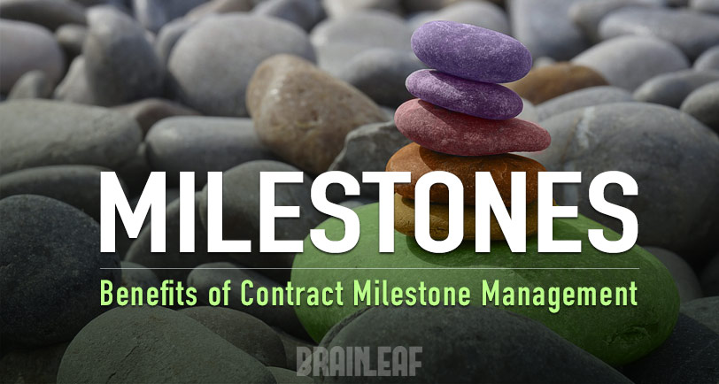 Payment Milestone Management in BrainLeaf